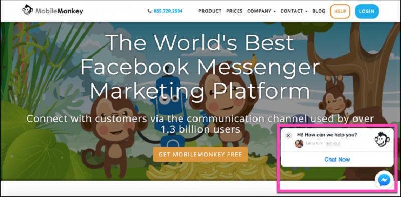 Mobile Monkey WordPress Chatbots