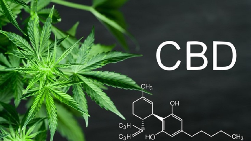 CBD-Cannabis-Affiliate-Marketing